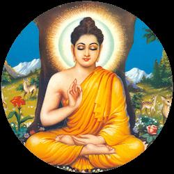 Bhuddha_Orchide_250x250